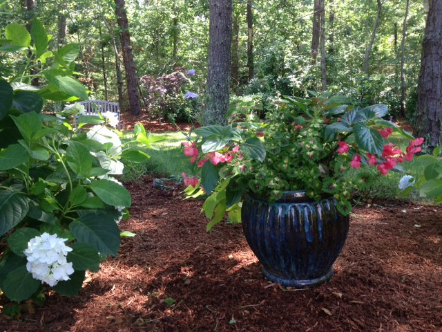 landscaping services Osterville Barnstable Harwich MA
