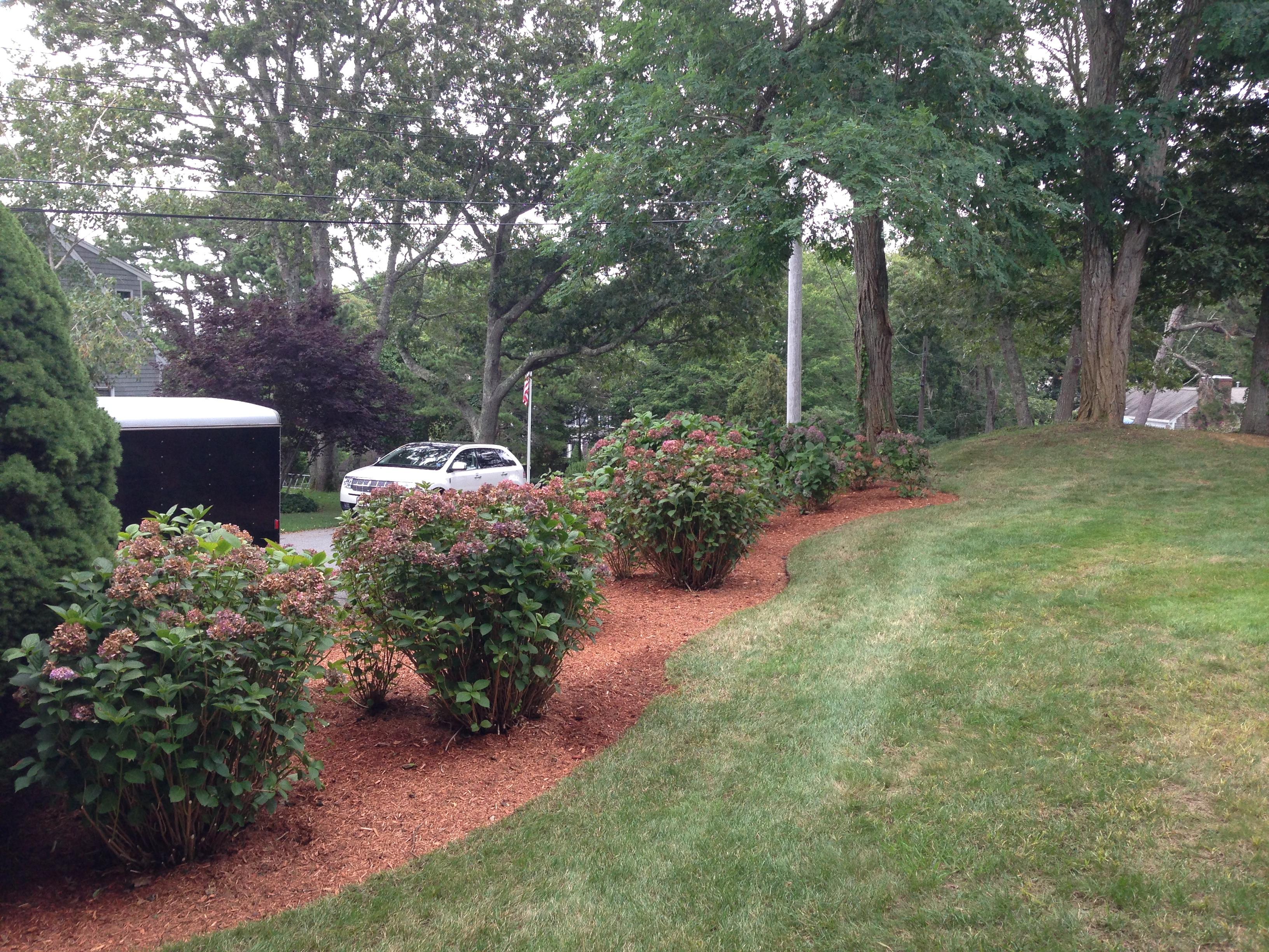 lawn maintance services Dennis