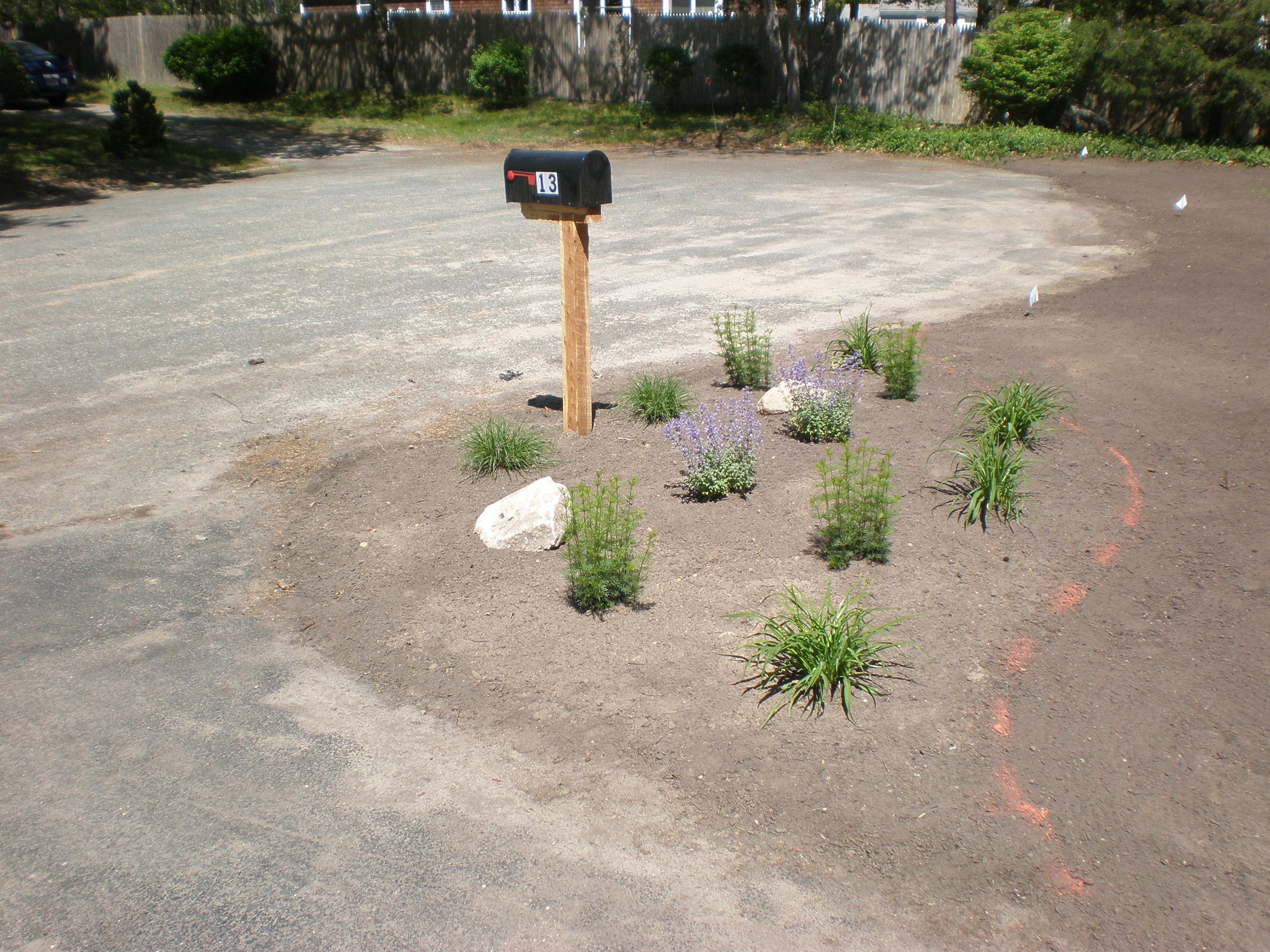 Cape Cod Landscape design services